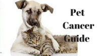 Pet Cancer Guide