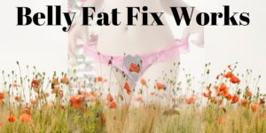 Belly fat fix system works