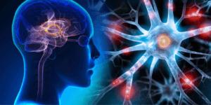 how to improve brain power